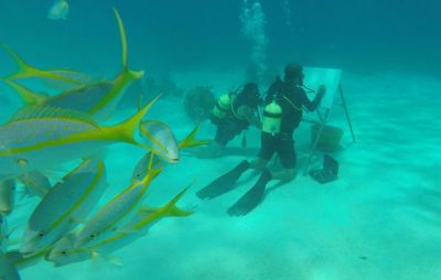 These men can paint underwater among the fish, Know how