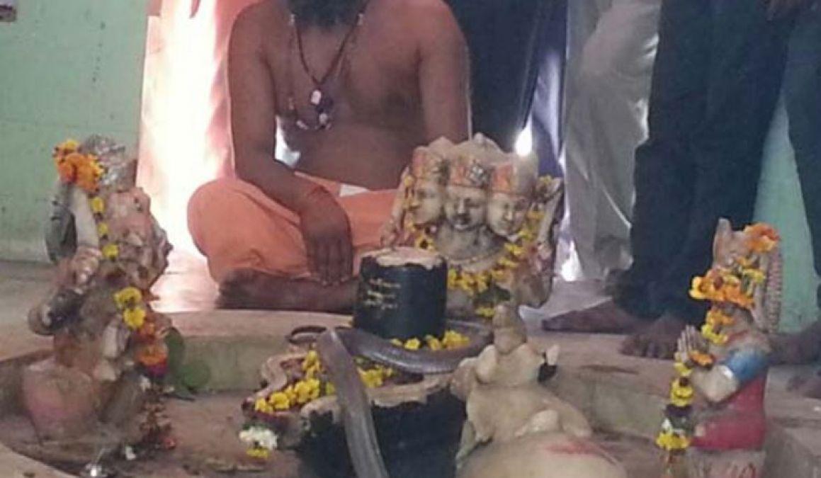 एक अनोखा शिव मंदिर जहां पुजारी की जगह सांप करता है पूजा