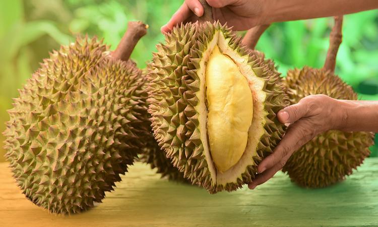 ये है दुनिया का सबसे बदबूदार फल, होश उड़ा देगी कीमत