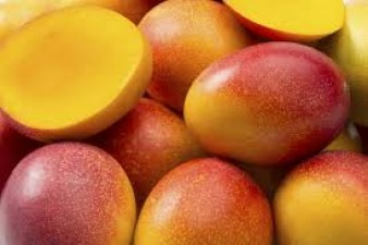 This is the world's most expensive mango