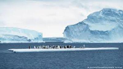 10000 वैज्ञानिकों ने दी चेतावनी, धरती के इन हिस्सों पर आने वाला है खतरा
