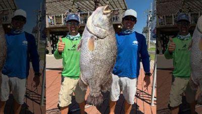 टूट गए सारे रिकार्ड्स, अमेरिका के मछुआरे ने पकड़ी विशालकाय मछली