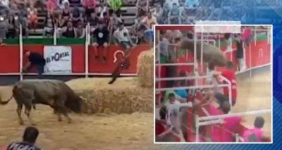 Video : चल रही थी Bull Fight, गुस्साए सांड ने कर दिया दर्शकों पर हमला और..