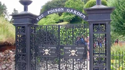 This garden is very poisonous, it can kill you in the blink of an eye!