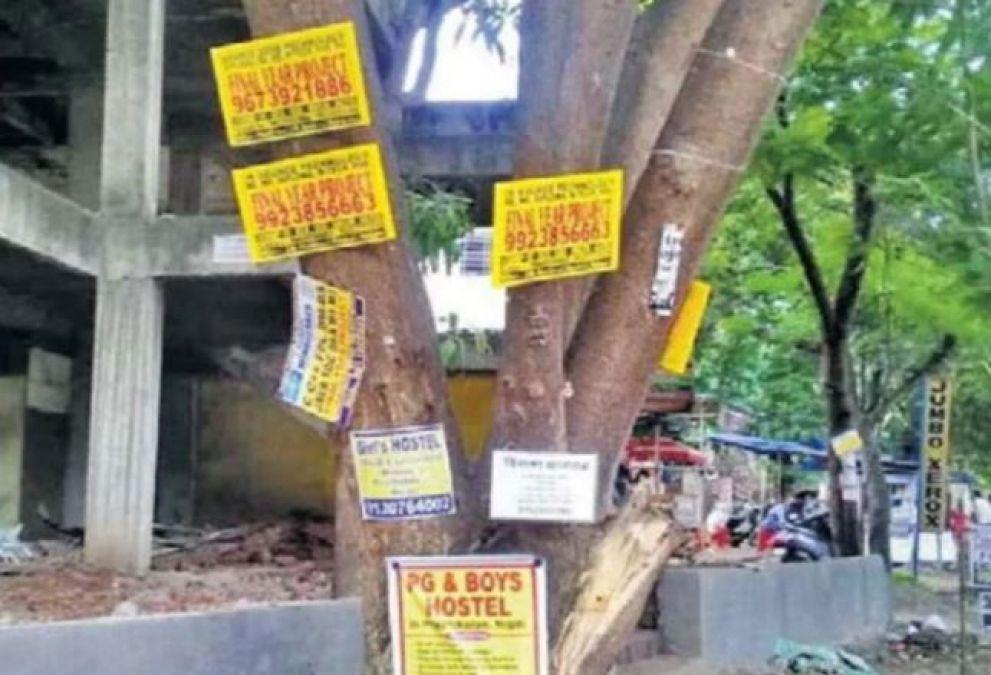 अब पेड़ों पर ठोंकी कील, तो 3 साल की हो सकती है जेल