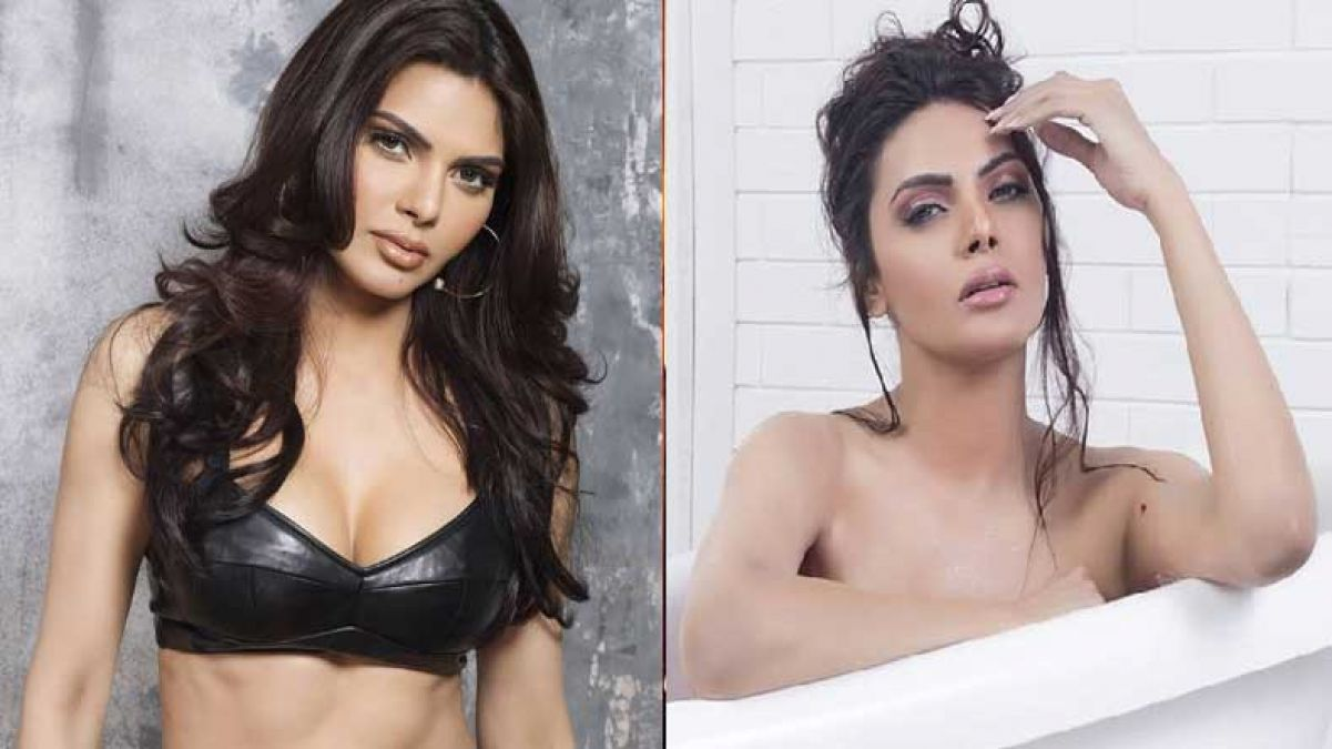 Sherlin Chopra latest video raise temperature, check out the video
