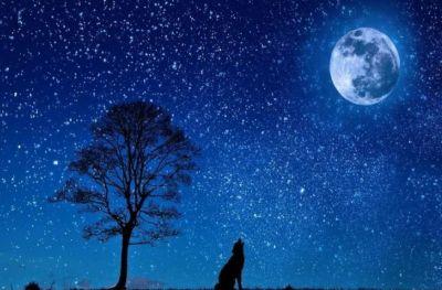 अगर नहीं होता चाँद, तो फिर कैसा होता जहान ? जानिए रोचक और हैरान करने वाली जानकारी