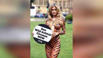 आखिर, क्यों मॉडल बाघ बनकर उतरी रोड पर?