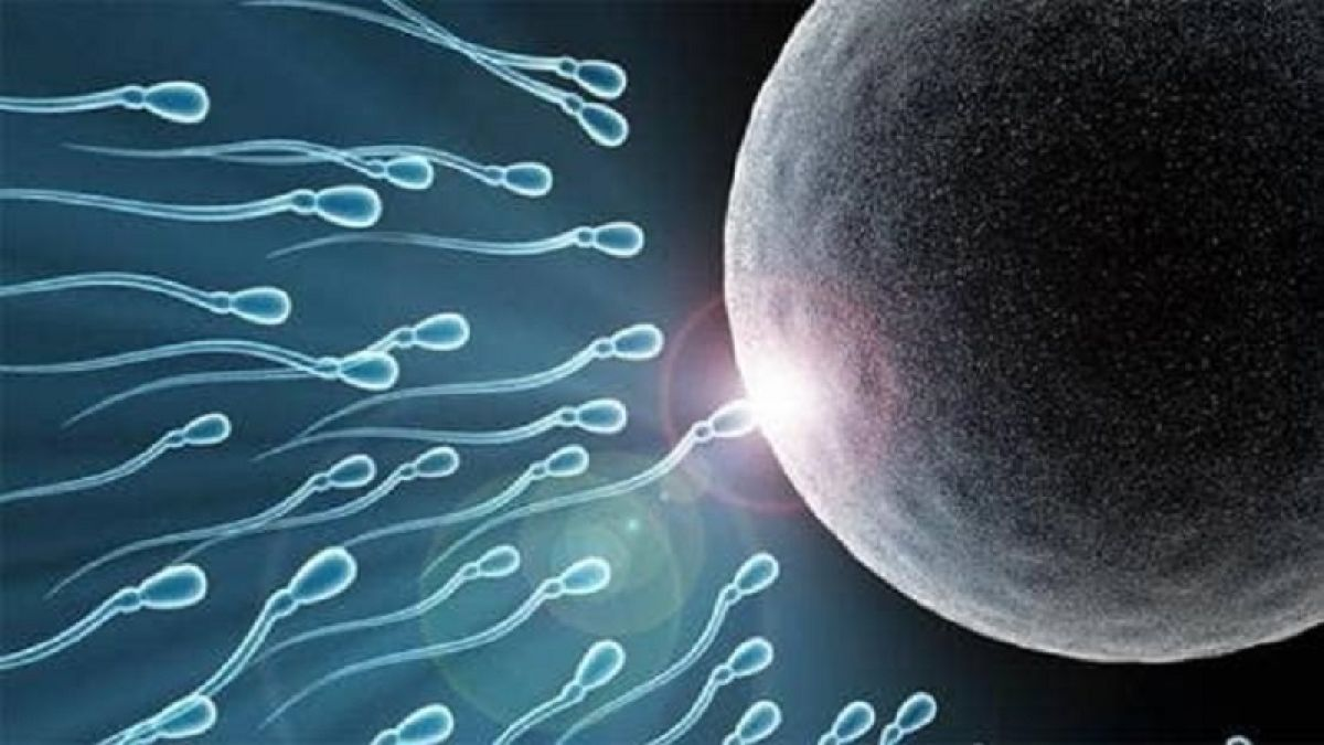 Scientists claims, 'Now woman can give birth to babies without male'