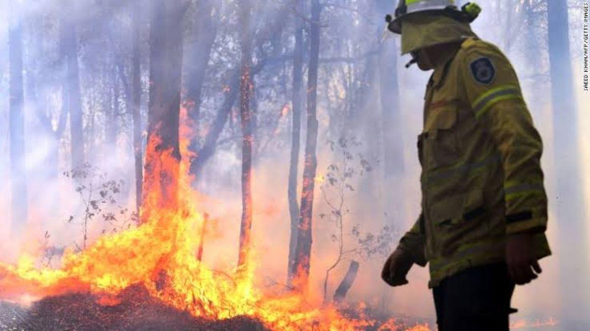 ऑस्ट्रेलिया के जंगल में भड़की आग,  अब तक तीन की मौत
