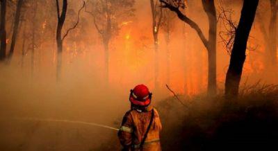 Australia's wildfire caused massive destruction, administration declared emergency