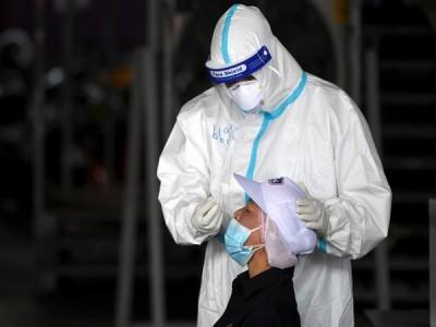 Brazil's corona  death toll reaches 227,563